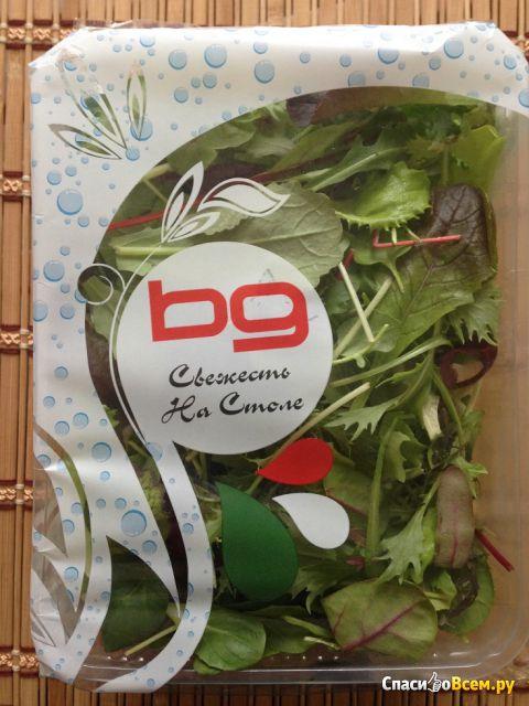 "Салат ""Bissolo Gabriele"" Руккола, латук, восточные травы фото"