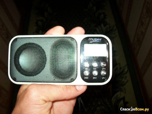 Мини-акустическая система Musky HJ-92 фото