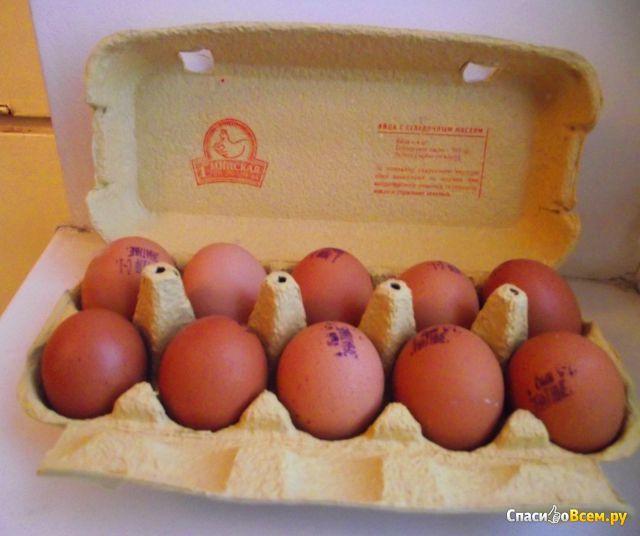 """Яйца куриные """"Знатные"""" обогащенные селеном и йодом 10 штук """"1-ая Минская птицефабрика"""" фото"""