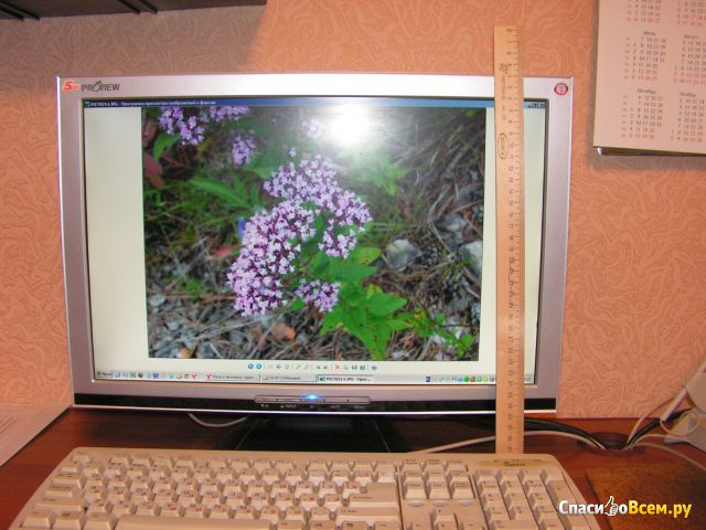 """Монитор Proview FV926AFW 19"""" фото"""