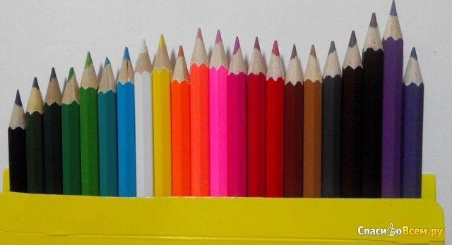 """Цветные карандаши Пифагор """"Сказочный мир"""" 24 цвета арт. 180242"""