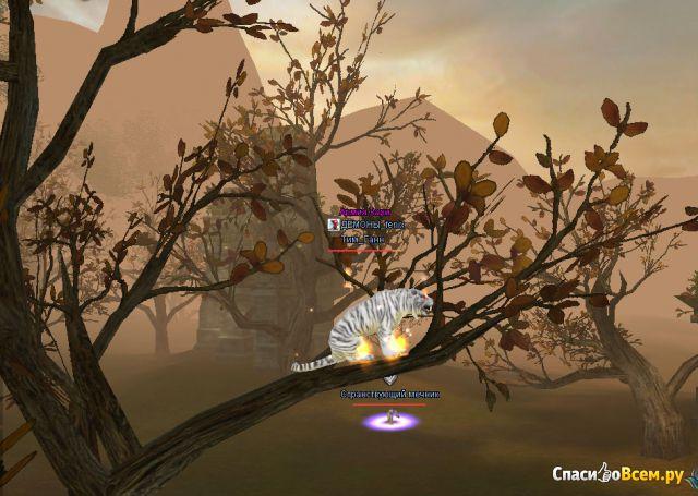 Многопользовательская ролевая онлайн-игра Perfect World фото