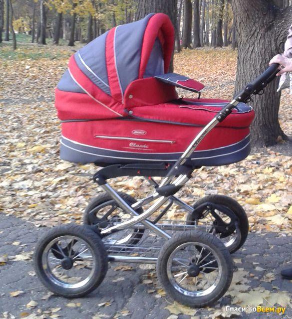 Детская коляска  Adamex Classic фото