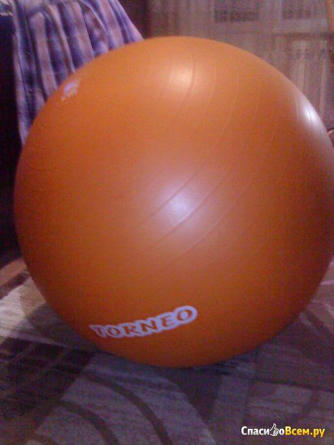 Гимнастический мяч-фитбол Torneo 75 см фото