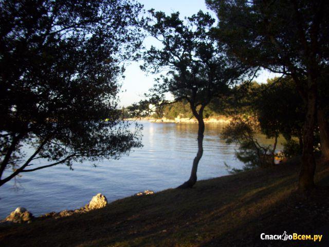 Зеленая Лагуна (Хорватия) фото