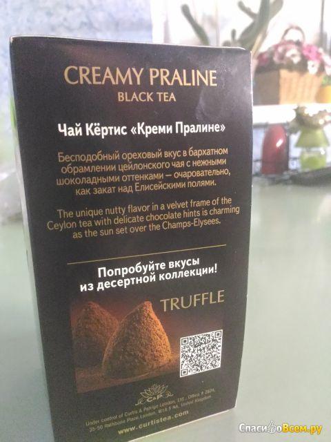 Черный чай Curtis Creamy Praline, в пакетиках фото
