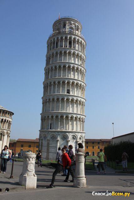 Город Пиза (Италия) фото