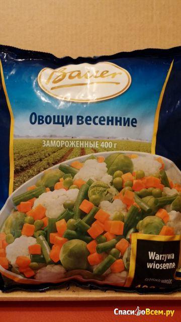 """Замороженные овощи Bauer """"Овощи весенние"""" фото"""