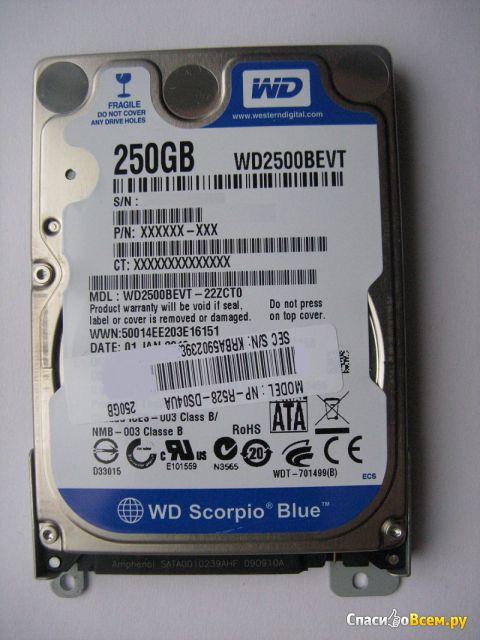 Жесткий диск Western Digital WD2500BEVT Scorpio Blue 250 GB фото