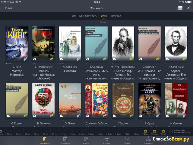 Приложение Mybook для iPad фото