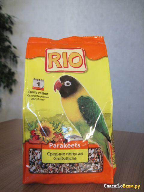 Состав корма для попугаев