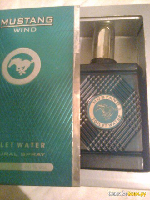 Туалетная вода для мужчин Mustang Wind фото
