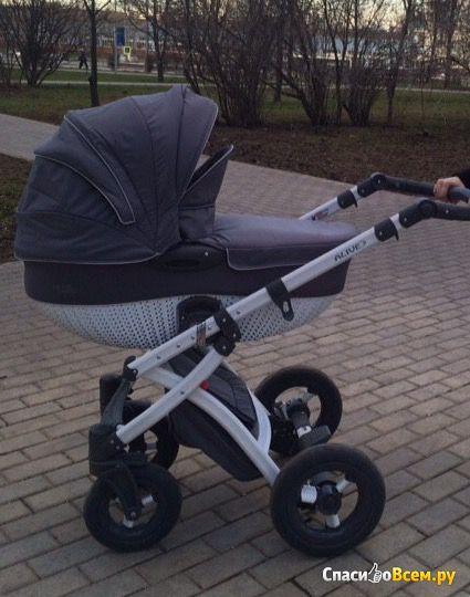 Детская коляска Tako Alive 2 в 1 фото