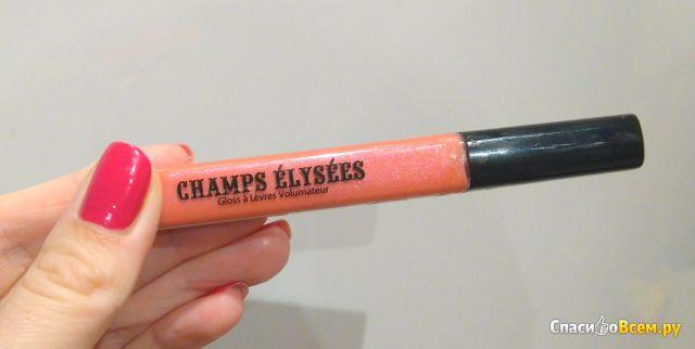 """Блеск для губ """"Vivienne Sabo"""" Champs Elysees фото"""