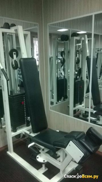 Тренажер Gym Vasil В.320 для отводящих мышц бедра фото