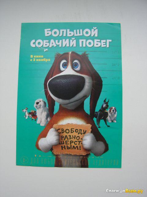 """Мультфильм """"Большой собачий побег"""" (2016) фото"""
