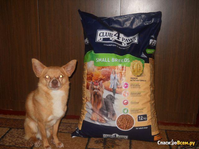 Сухой корм для собак малых пород Club 4 Paws фото
