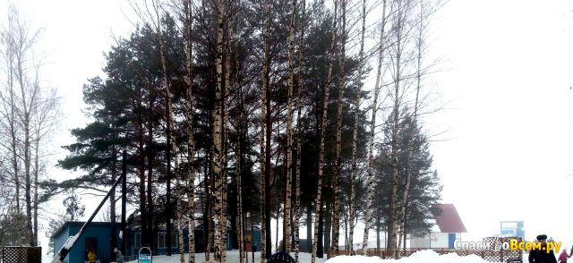 """Дом отдыха """"Торово"""" (Россия, Череповец) фото"""