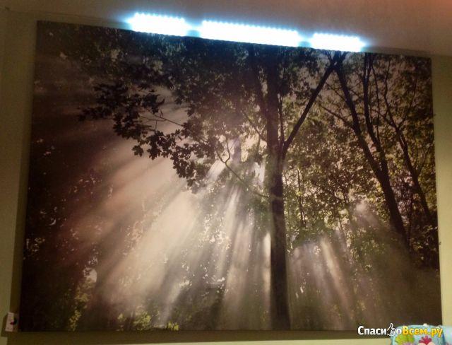 """Картина IKEA Премиэр """"Крещендо света"""" фото"""