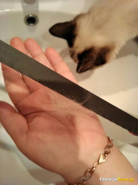Процедура расчесывания кошки ножовочным полотном фото