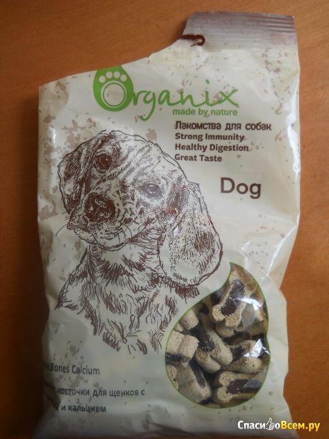 Нежные косточки для щенков с ягненком и кальцием Organix фото