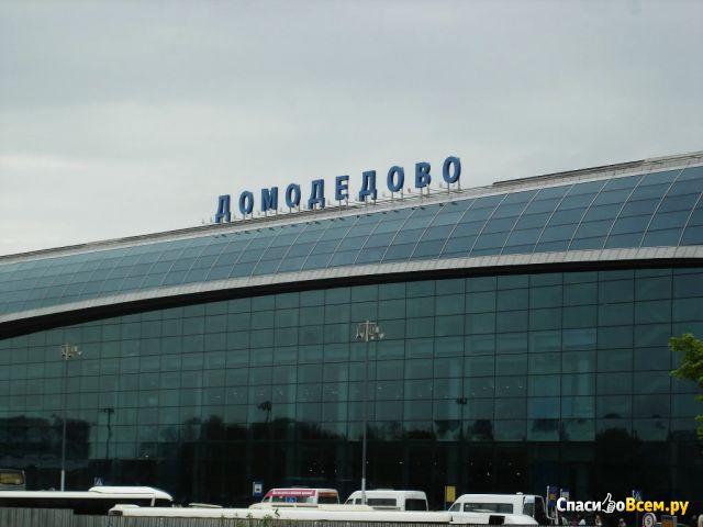 Аэропорт Домодедово (Москва) фото