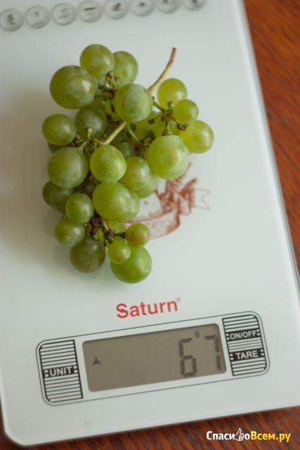 Кухонные электронные весы Saturn ST-KS7235 фото