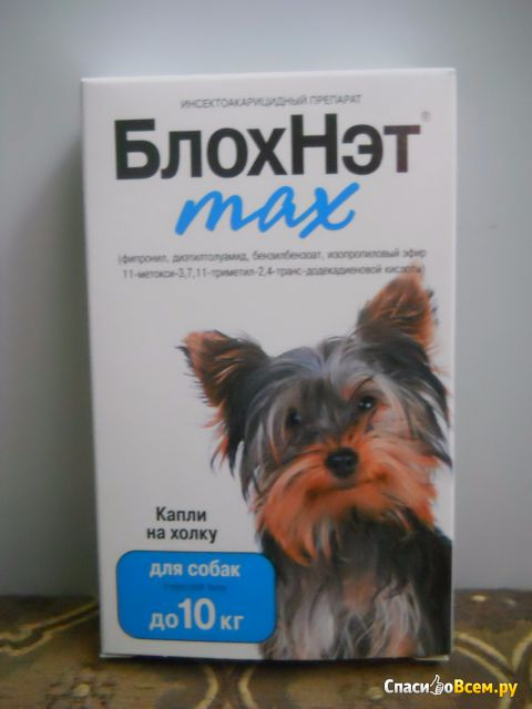 """Инсектоакарицидный препарат """"БлохНэт"""" max против клещей и блох для собак с массой тела до 10 кг фото"""