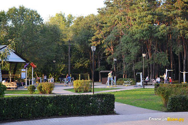 """Парк """"Алые Паруса"""" (Россия, Воронеж) фото"""