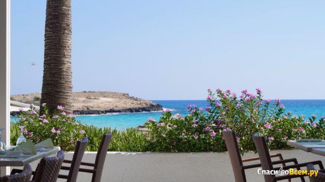 Пляж Nissi beach (Кипр, Айя Напа) фото