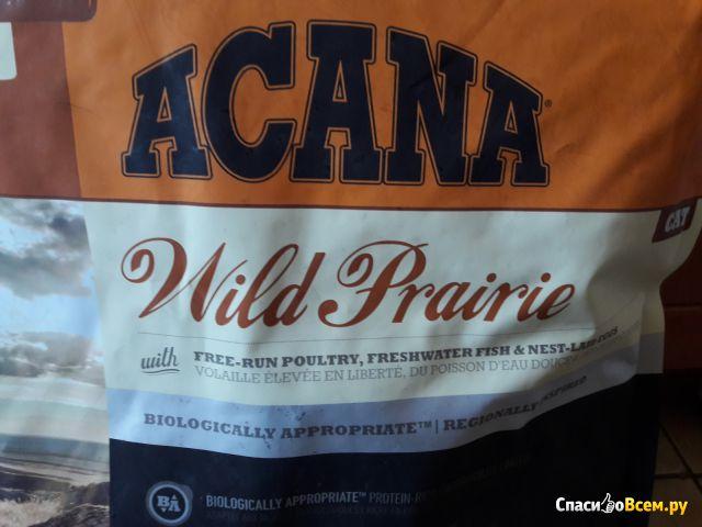 Сухой корм для кошек Acana Wild prairie фото
