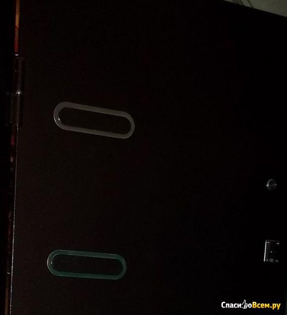 Входная стальная дверь Ергак 888 с зеркалом фото