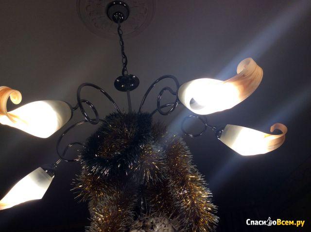 """Лампа светодиодная LED """"Bellight"""" цоколь Е14 4W 350 лм фото"""