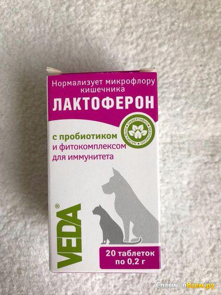 Функциональный корм Veda Лактоферон пробиотик с фитокомплексом для иммунитета. фото
