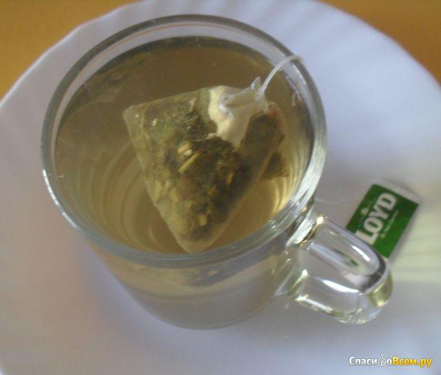 Зеленый чай Loyd с ароматом малины в пакетиках фото