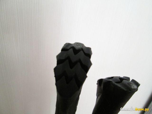 Треккинговые палки Leki Eagle фото