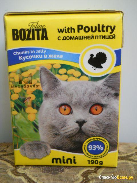 Влажный корм для кошек Bozita mini кусочки в желе с домашней птицей фото