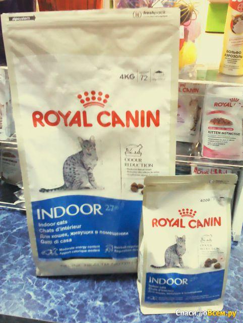 Сухой корм для кошек Royal Canin Indoor 27 фото