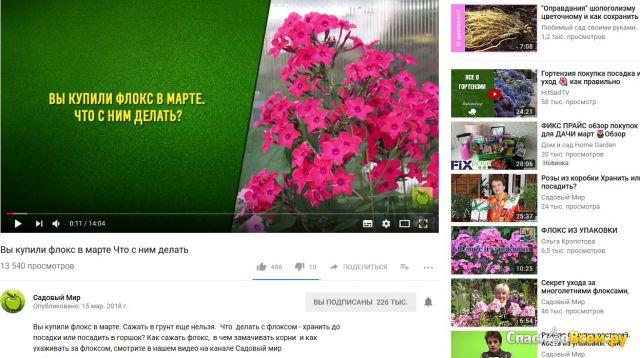 "Канал на youtube ""Садовый мир"" фото"
