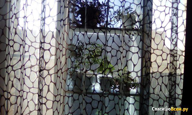 "Салон по пошиву штор, карнизы, дизайн Art Studio ""Ламбрекен"" (Таганрог ул. С.Шило, д. 241 ) фото"