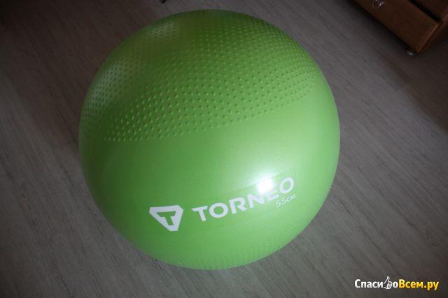 Мяч гимнастический Torneo A-208 55 см фото