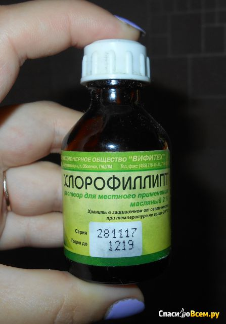 """Раствор для местного применения """"Хлорофиллипт"""" масляный 2% фото"""