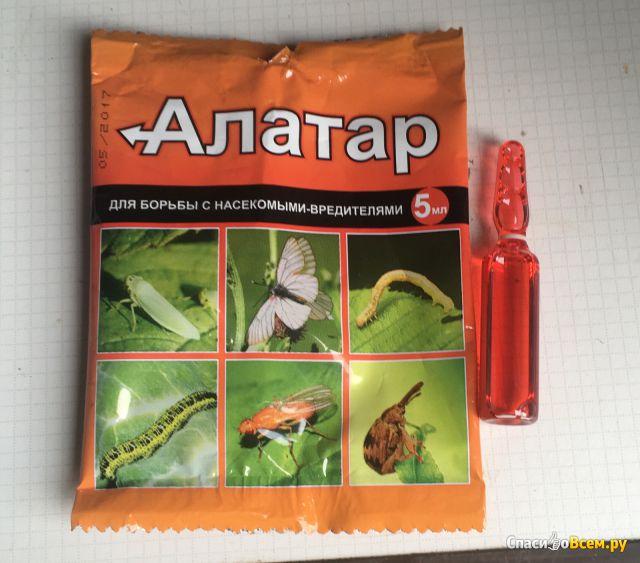 """Инсектицид """"Алатар"""" для борьбы с насекомыми-вредителями"""