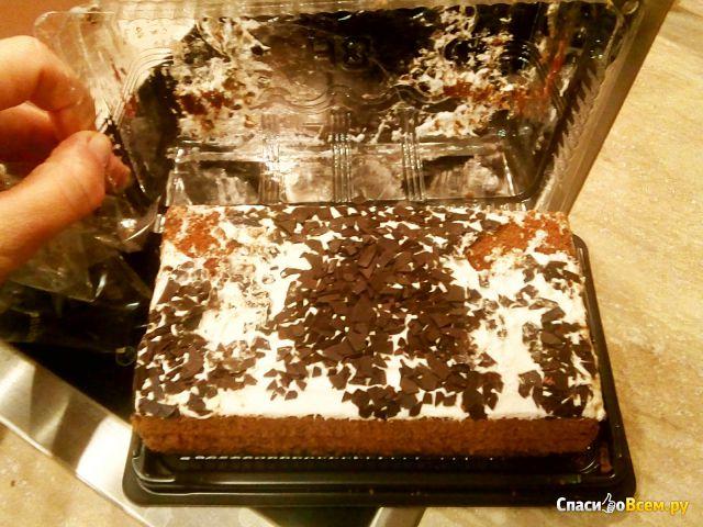 "Торт ""Baker House"" Шварцвальд фото"