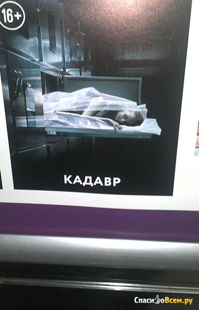 "Фильм ""Кадавр"" (2018) фото"