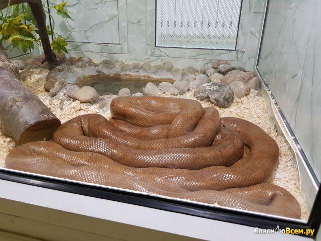 Гродненский зоологический парк фото