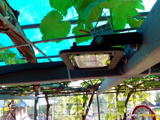 Светильник светодиодный Volpe ULF-Q511 фото