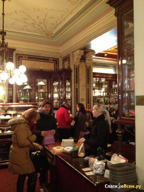 Кофейня Demel (Вена, Австрия) фото