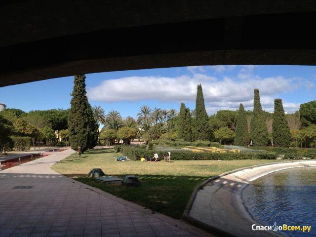 Парк Турия в Валенсии (Испания) фото