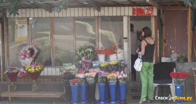 Цветочные ряды на улице Гагарина (Тольятти, ул. Гагарина) фото
